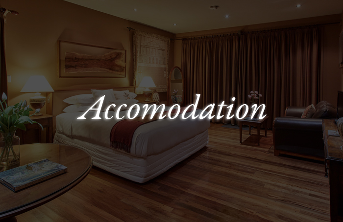 accomodation vip tours